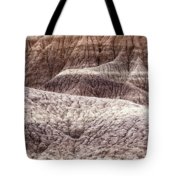 Petrified Forest National Park 3 Tote Bag