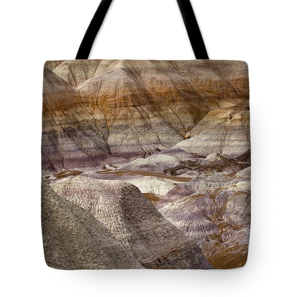 Petrified Forest National Park 4 Tote Bag