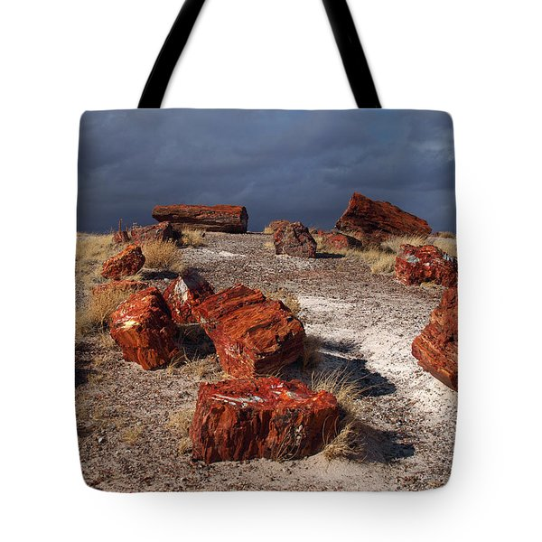 Tote Bag featuring the photograph Petrified Forest National Park by James Peterson