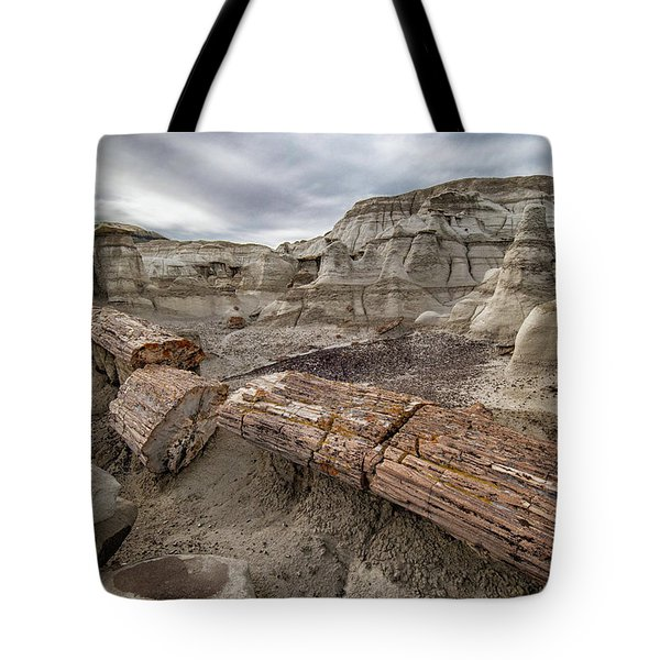 Petrified Remains Tote Bag by Alan Toepfer