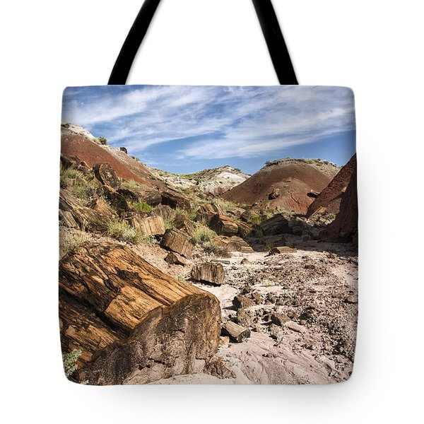 Tote Bag featuring the photograph Petrified Wood In The Painted Desert by Melany Sarafis