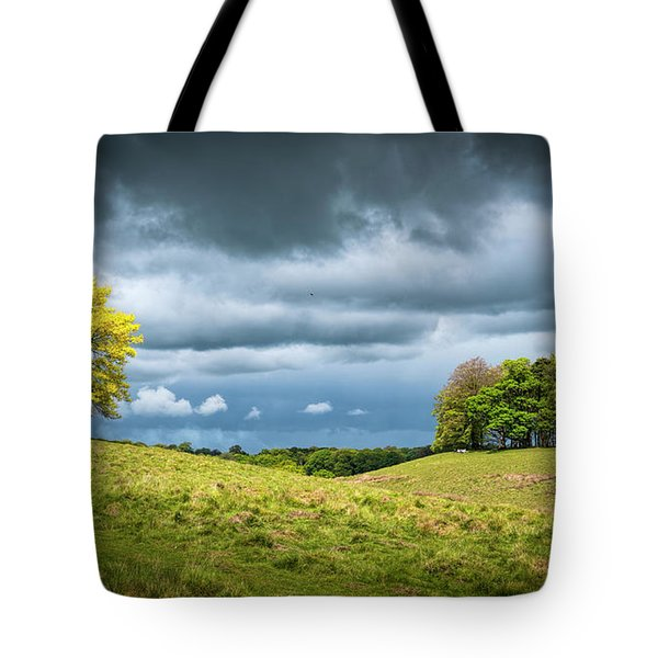 Tote Bag featuring the photograph Petworth Dark And Light by Michael Hope