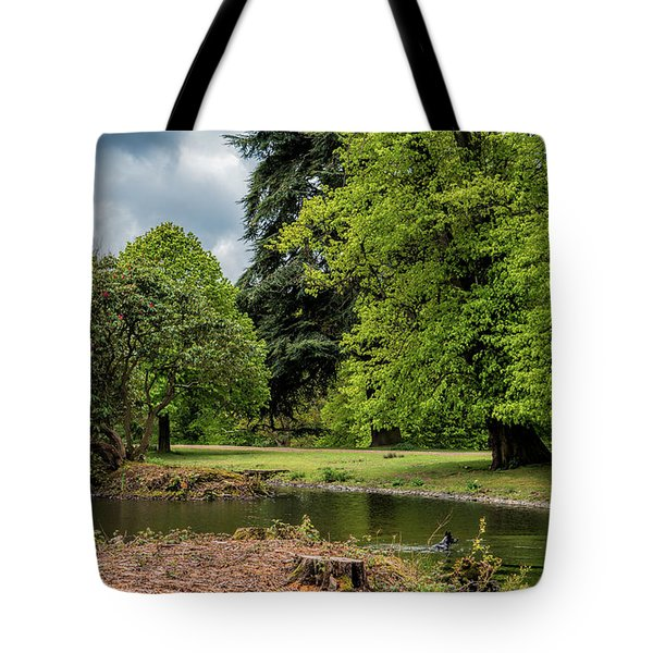 Tote Bag featuring the photograph Petworth Lake With Dog by Michael Hope