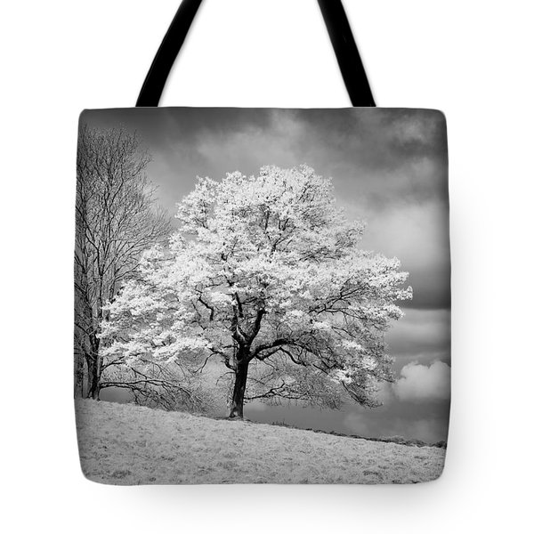 Petworth Tree Tote Bag by Michael Hope