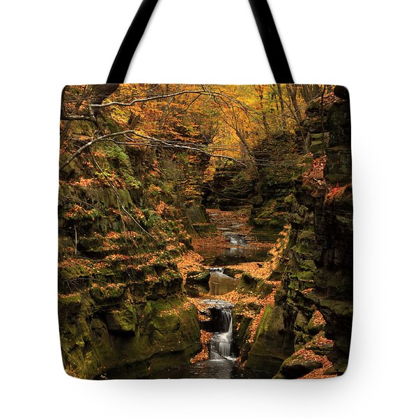 Pewit's Nest - Wisconsin Tote Bag