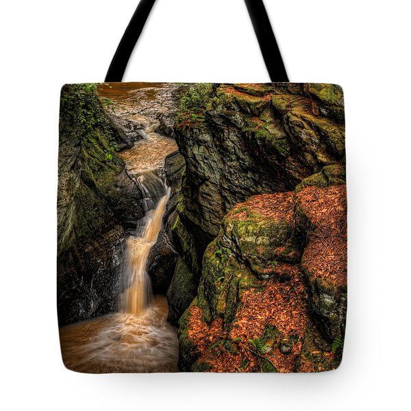 Pewits Nest Three Waterfalls Tote Bag