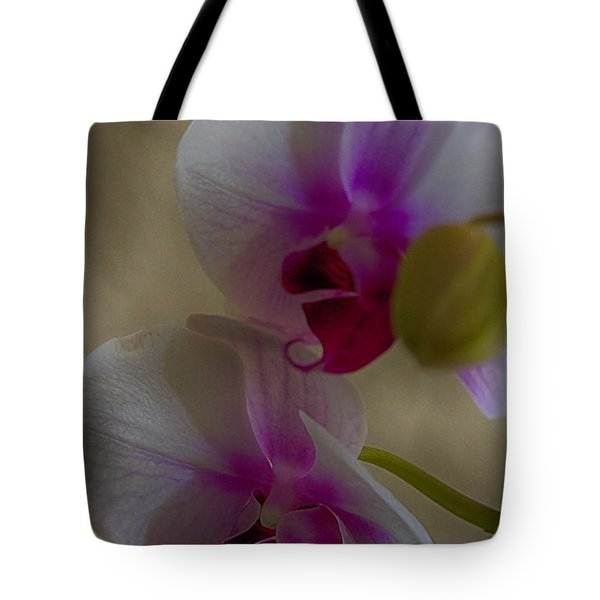 Tote Bag featuring the photograph Phalaenopsis by Anne Rodkin