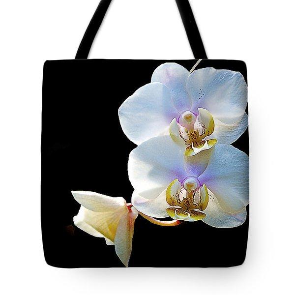 Phalaenopsis Culican #1 Nobby's Amy Shin Hua Tote Bag