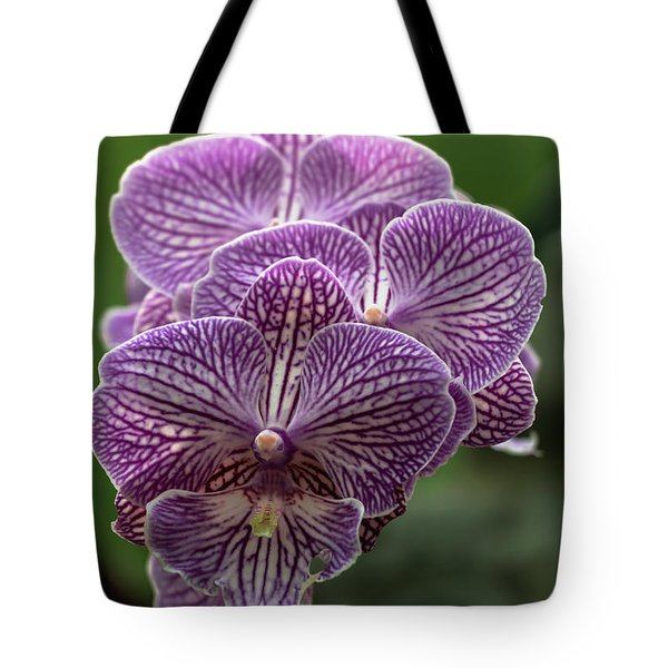 Tote Bag featuring the photograph Phalaenopsis Orchid by Cristina Stefan
