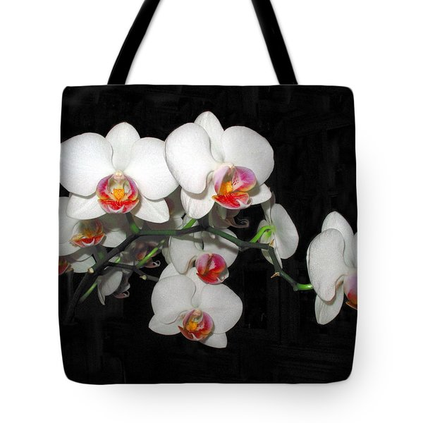 Phalaenopsis Orchids Tote Bag