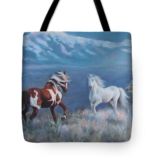 Phantom Of The Mountains Tote Bag by Karen Chatham
