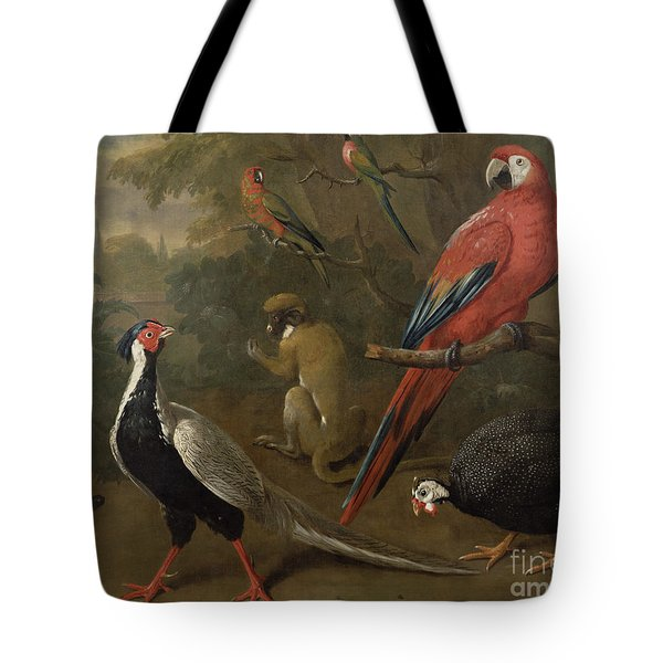 Pheasant Macaw Monkey Parrots And Tortoise  Tote Bag by Charles Collins