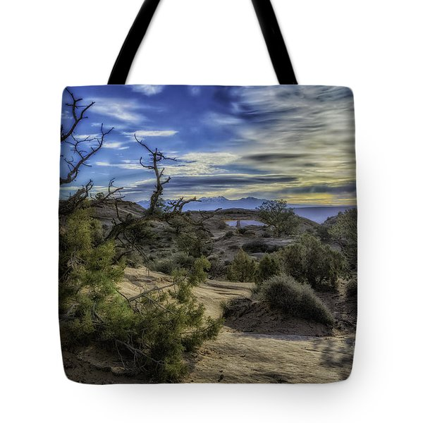 Tote Bag featuring the photograph Phenomenal by Bitter Buffalo Photography
