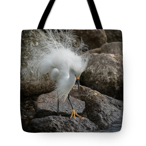 Phills Diller Tote Bag