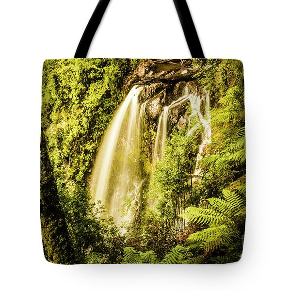 Philosopher Falls, Western Tasmania Tote Bag