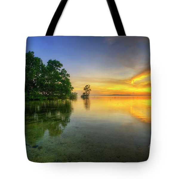 Tote Bag featuring the photograph Phoenix Nights 5.0 by Yhun Suarez