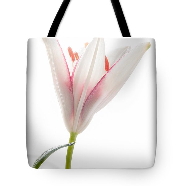 Tote Bag featuring the photograph Photograph Of A Pale Lily Opening I by David Perry Lawrence
