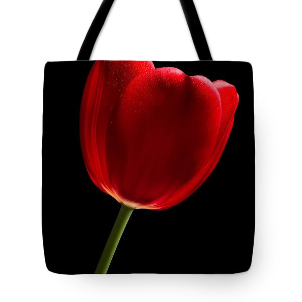Tote Bag featuring the photograph Photograph Of A Red Tulip On Black I by David Perry Lawrence