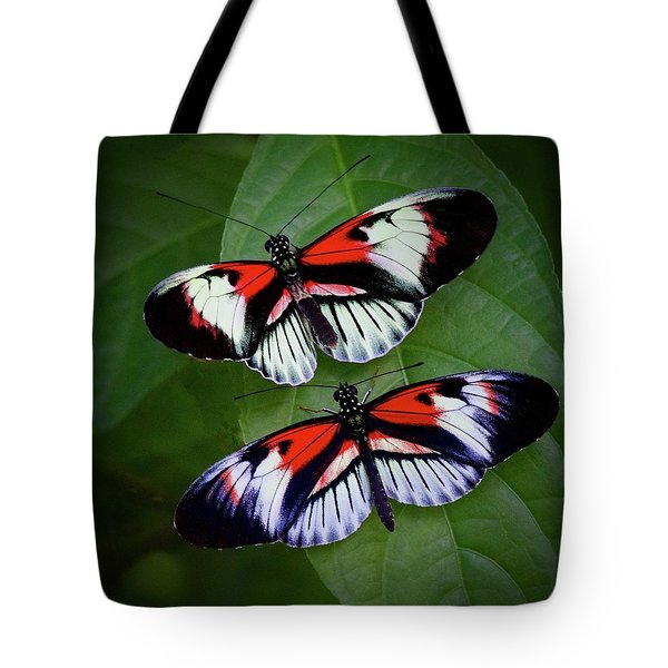 Piano Key Butterfly's Tote Bag