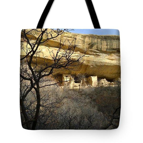Pic 5 Tote Bag