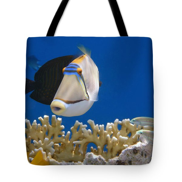 Picasso Fish And Klunzingerwrasse Tote Bag