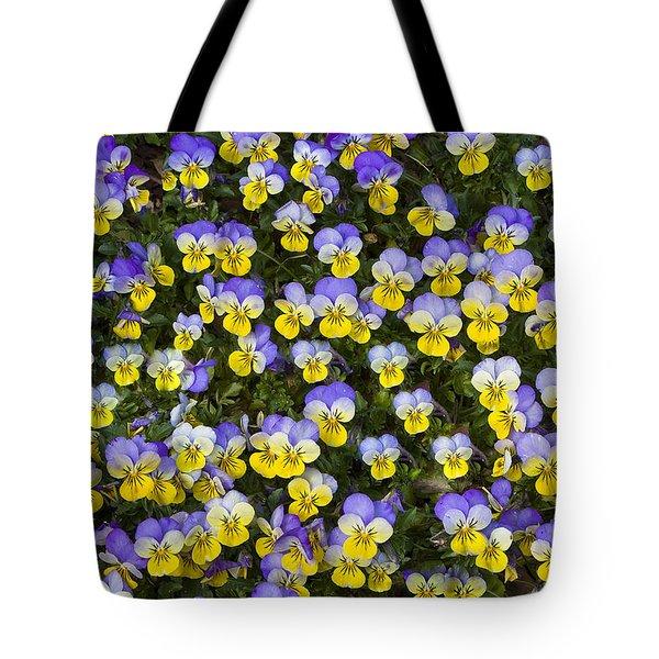 Pick Me-pansies Tote Bag