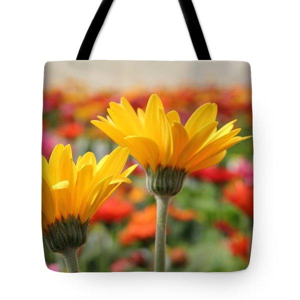 Pick Me... No Pick Me Tote Bag by Betty Northcutt