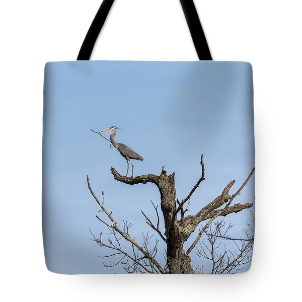 Picking Sticks Tote Bag by Thomas Young
