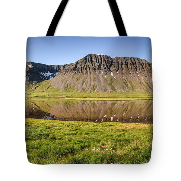 Picnic - Panorama Tote Bag