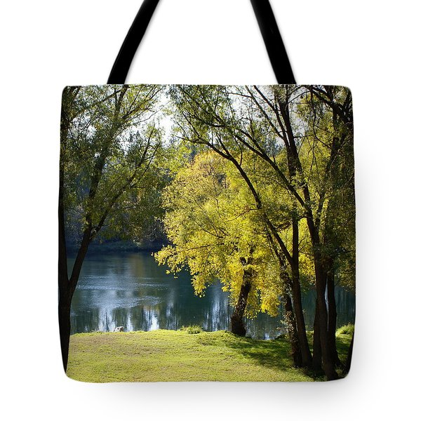 Tote Bag featuring the photograph Picnic Spot On Spokane River by Ben Upham III
