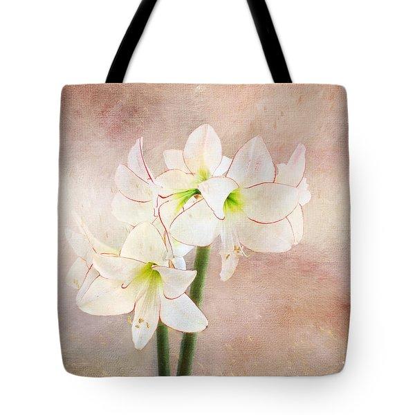 Picotee Amaryllis Tote Bag