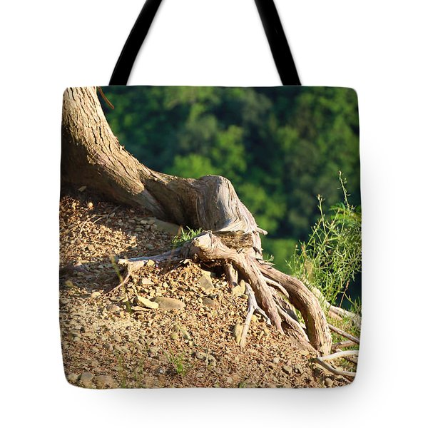 Picture Of A Tree On A Ledge Tote Bag
