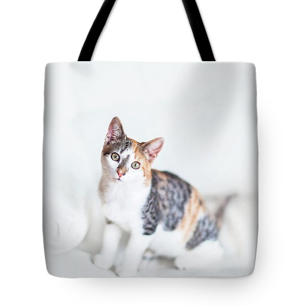 Picture Purfect Tote Bag