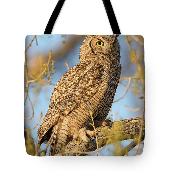 Picturesque Tote Bag