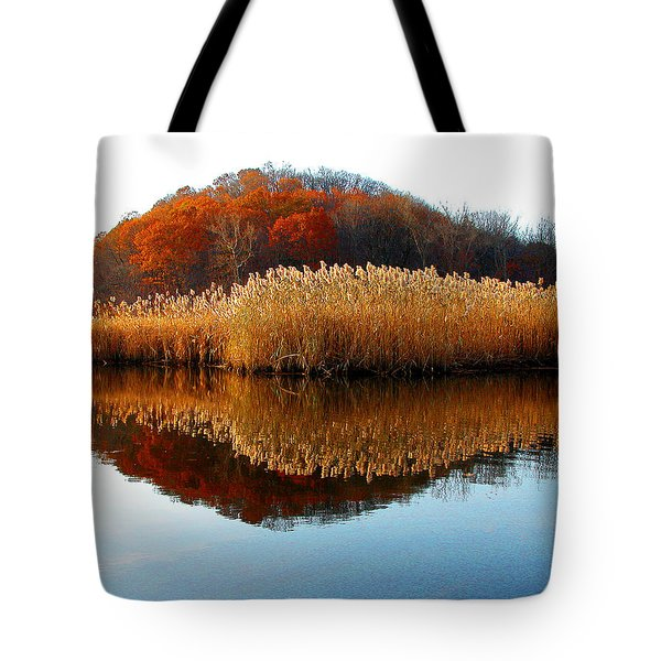 Piermont Backwater Tote Bag