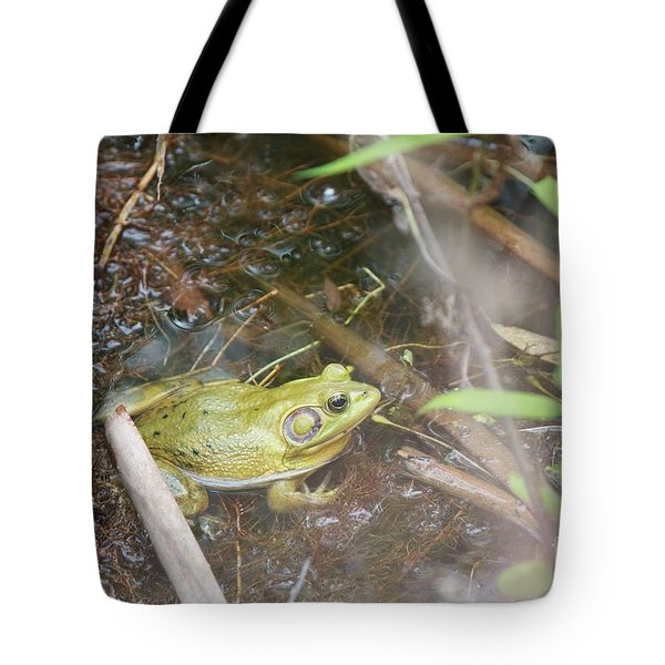 Tote Bag featuring the photograph Pig Frog by David Grant