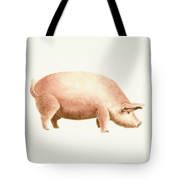 Pig Tote Bag by Michael Vigliotti