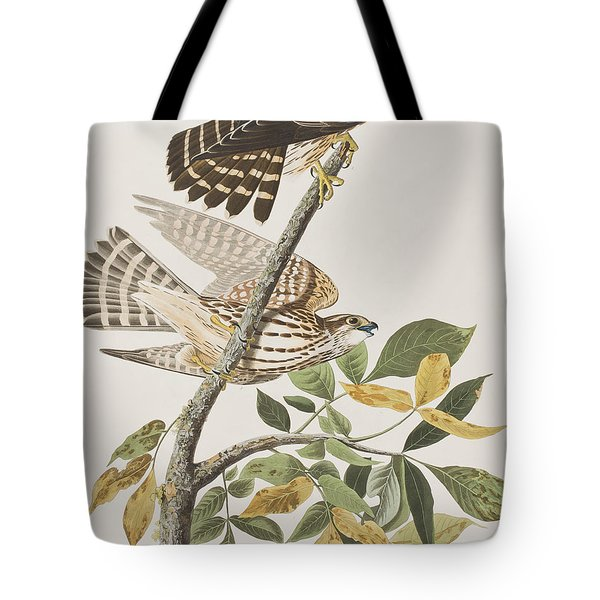 Pigeon Hawk Tote Bag by John James Audubon