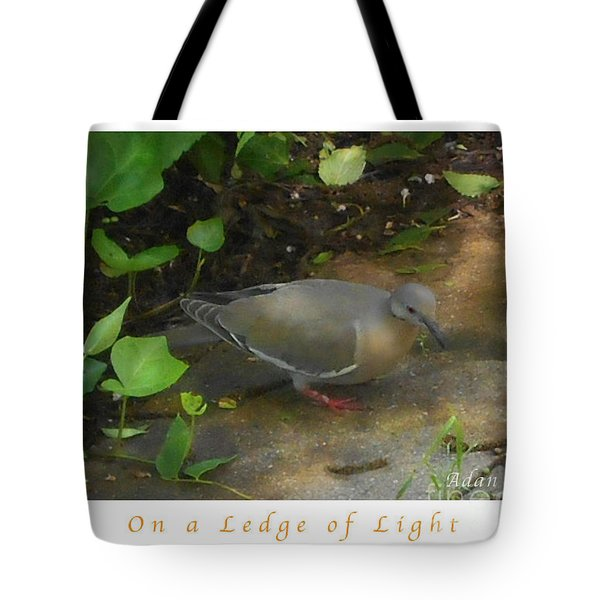 Tote Bag featuring the photograph Pigeon Poster by Felipe Adan Lerma