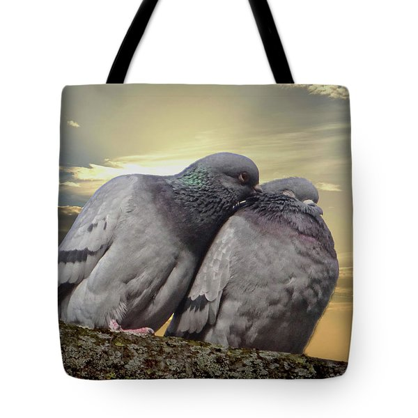 Pigeons In Love, Smooching On A Branch At Sunset Tote Bag