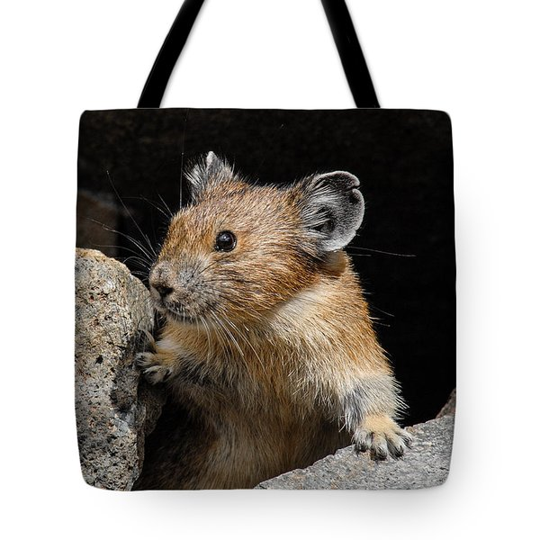 Pika Looking Out From Its Burrow Tote Bag