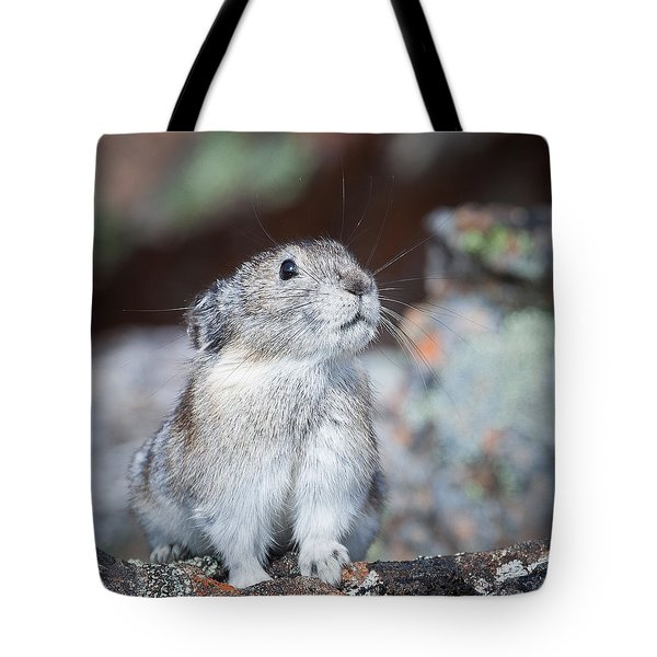 Pika Portrait Tote Bag