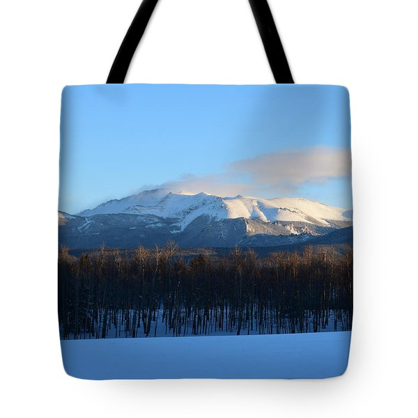 Pikes Peak From Cr511 Divide Co Tote Bag