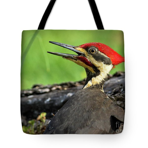 Tote Bag featuring the photograph Pileated by Douglas Stucky