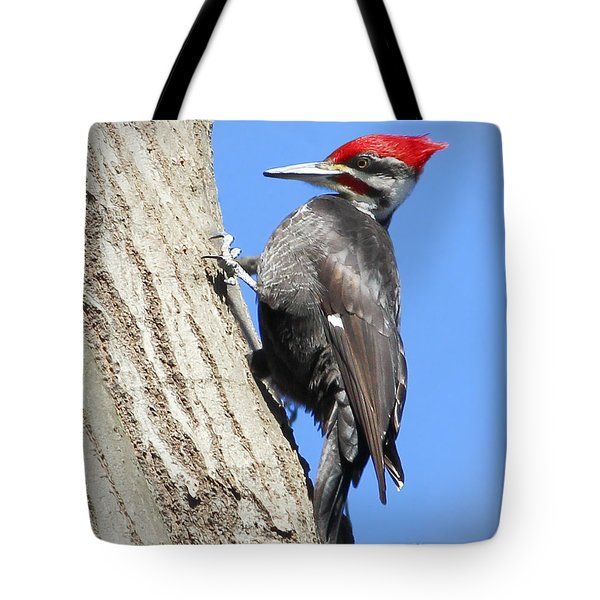 Pileated Power Tote Bag by Anita Oakley