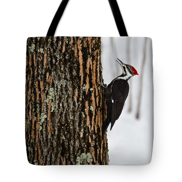 Pileated Woodpecker Tote Bag by Skip Tribby