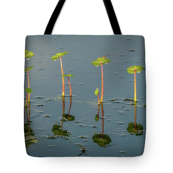 Pillars Of Life Tote Bag