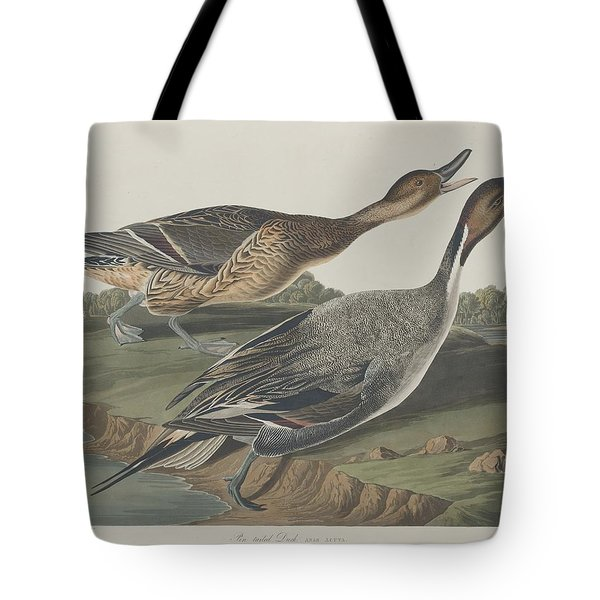 Pin-tailed Duck Tote Bag