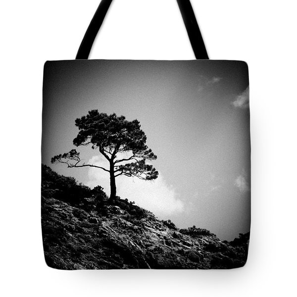 Pine At Sky Background Artmif.lv Tote Bag