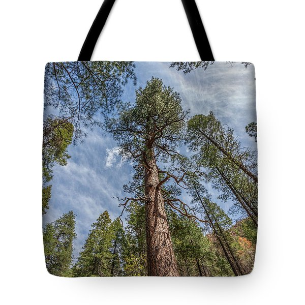 Pine Cathedral On The West Fork Tote Bag